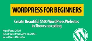 Video Tutorial WordPress Beginners From Zero To Beautiful $500 Websites In 3 Hours tutorial WordPress